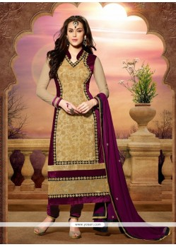 Beige Net And Velvet Churidar Salwar Suit