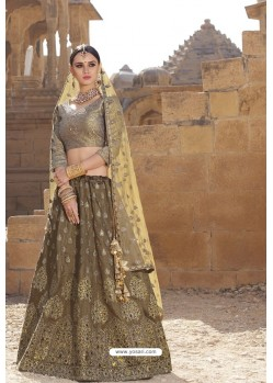 Multi Colour Raw Silk Heavy Embroidered Designer Bridal Lehenga Choli