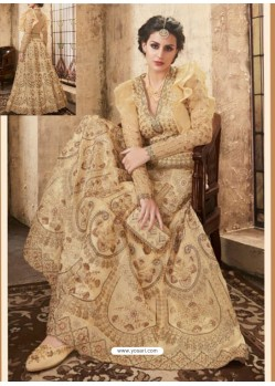 Light Beige Net Heavy Embroidered Designer Lehanga Choli