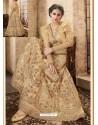 Light Beige Net Heavy Embroidered Designer Lehanga Choli