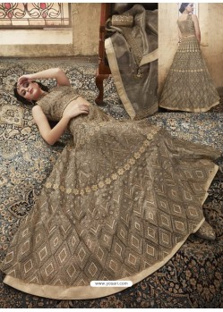 Beige And Coffee Net Heavy Embroidered Designer Lehanga Choli