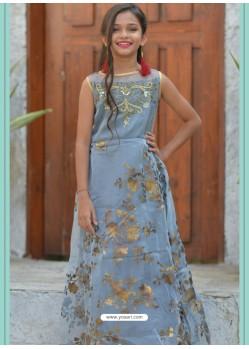 Aqua Grey Organza Hand Worked Designer Gown
