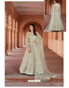 Taupe Net Heavy Embroidered Designer Floor Length Suit