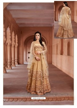 Cream Net Heavy Embroidered Designer Floor Length Suit
