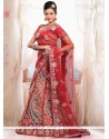 Amazing Red Net Wedding Lehenga Choli
