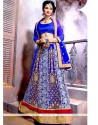 Orphic Blue Patch Border Work Net A Line Lehenga Choli