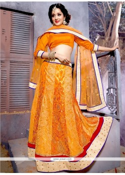 Sightly Orange A Line Lehenga Choli
