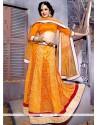 Sightly Orange A Line Lehenga Choli