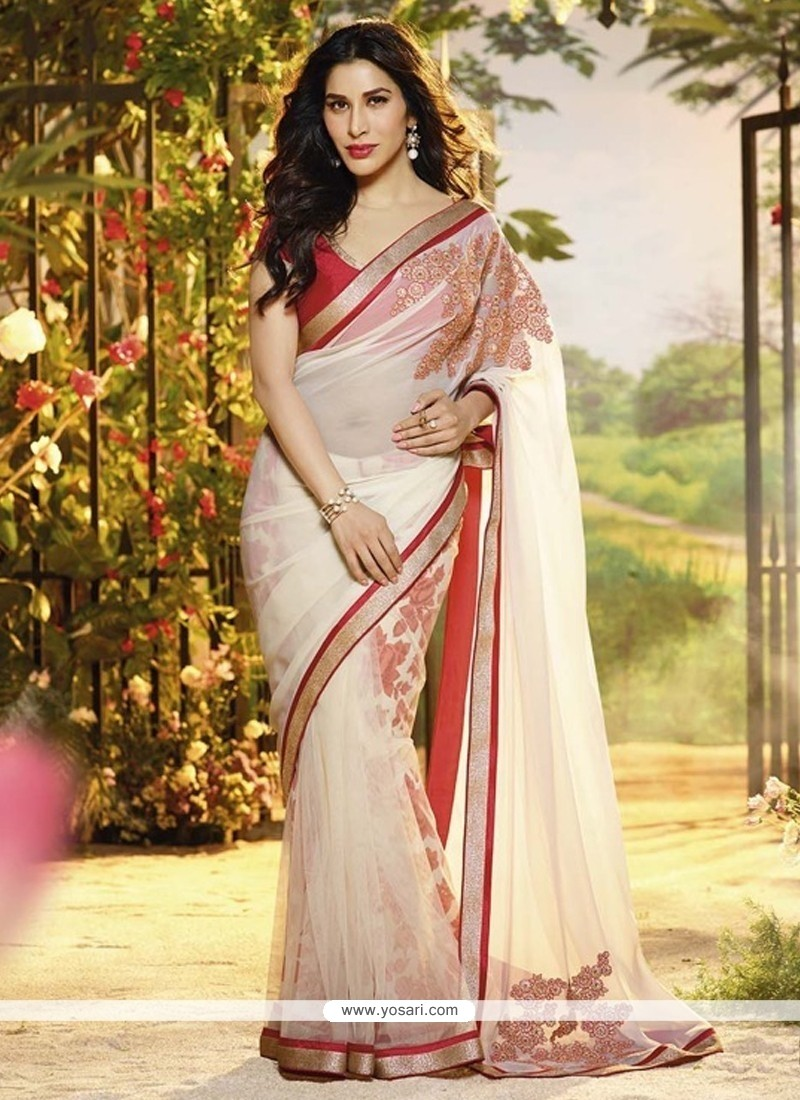 Off White Chiffon And Net Designer Saree
