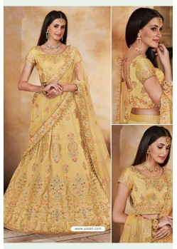 Khaki Heavy Multi Embroidered Designer Wedding Lehenga Choli