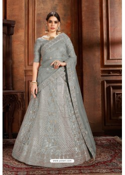 Grey Soft Net Designer Lehenga Choli