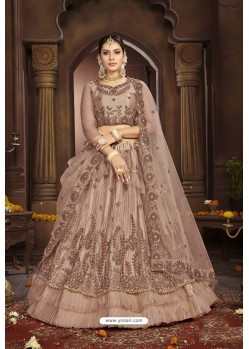 Light Brown Net Designer Lehenga Choli