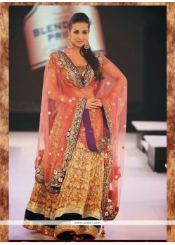 Beige Embroidered Work Designer Lehenga Choli