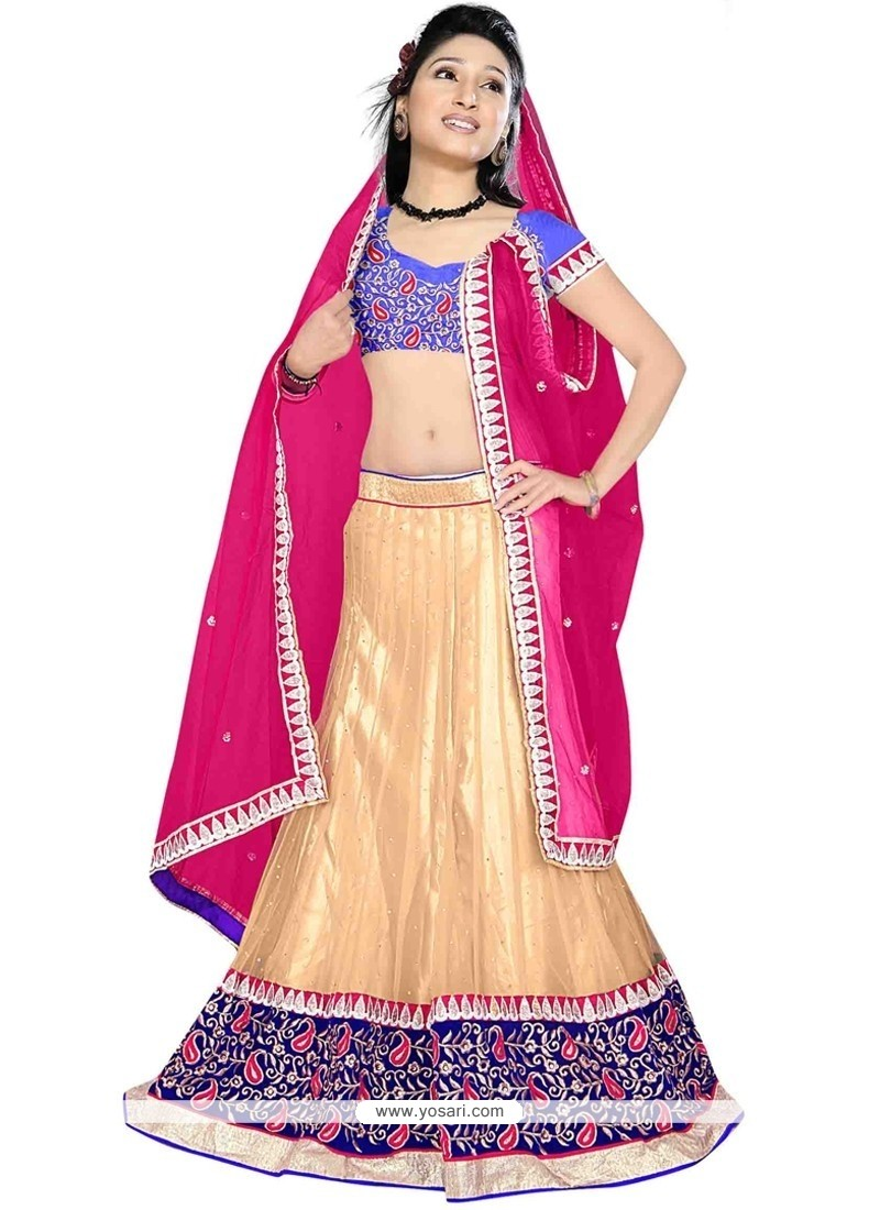 Invigorating Embroidered Work Net A Line Lehenga Choli