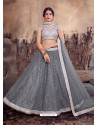 Grey Designer Mono Net Zari Worked Lehenga Choli