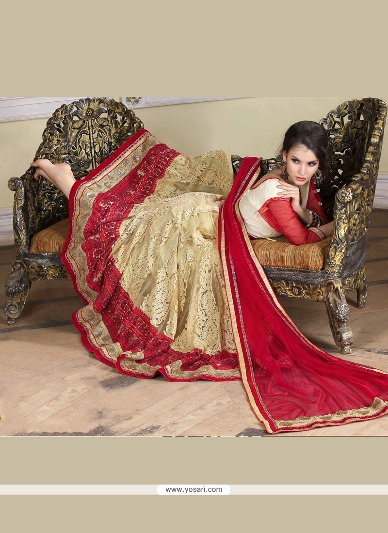 Unique Embroidered Work Net A Line Lehenga Choli