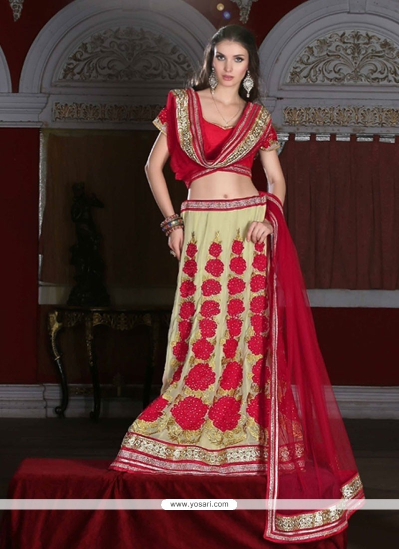 Celestial Net Embroidered Work A Line Lehenga Choli