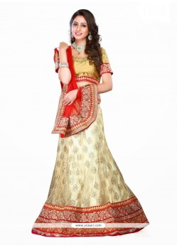 Immaculate Net Patch Border Work A Line Lehenga Choli