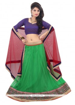 Innovative Net Green Patch Border Work A Line Lehenga Choli