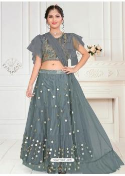 Grey Designer Net Wedding Lehenga Choli